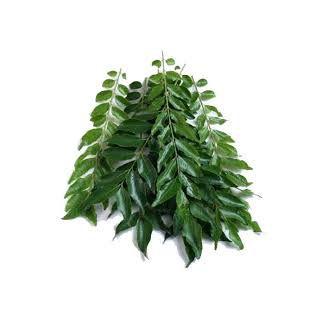 Organic Curry Leaf(100 Gms)